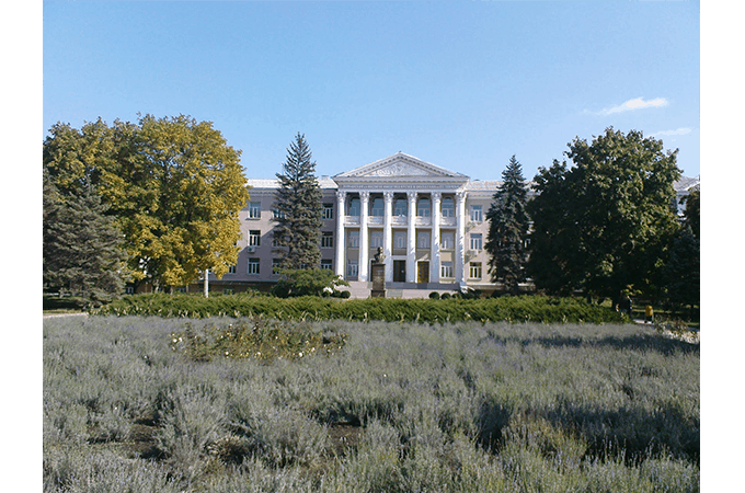 tairova-institut